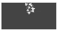 Cazare hotel Sibiu, restaurant, organizare evenimente   Logo